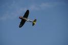 P-47 Thunderbold_17